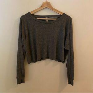 🌹4/16🌹American apparel cropped grey sweatshirt